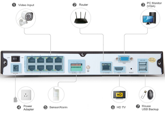 Rear Panel of 8 channel nvr